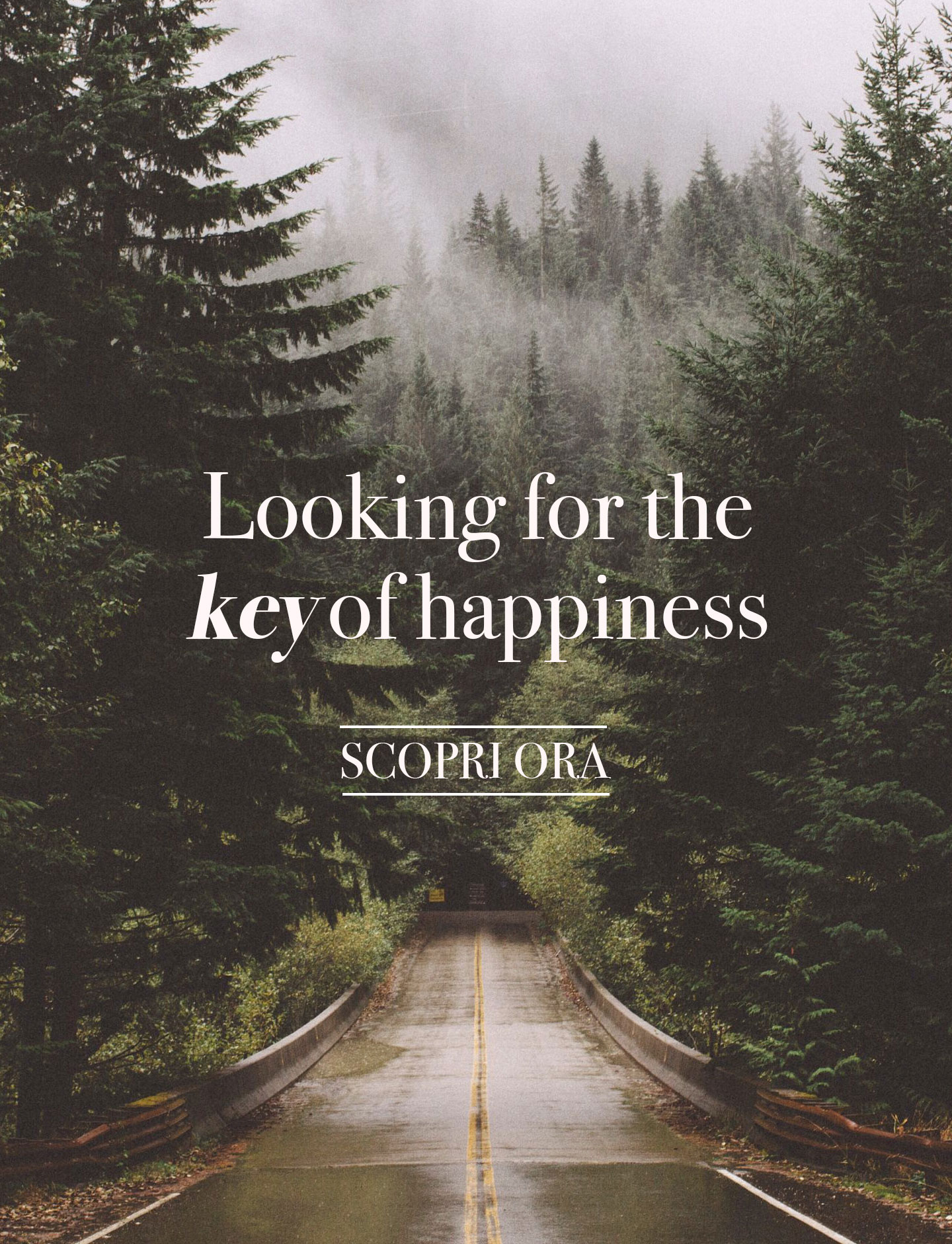 looking for the key of happiness